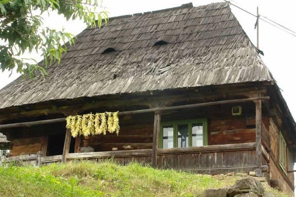 Văleni - Casă veche