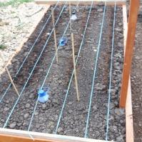 Ceapa și morcovii sunt semănate de 1 zi. Patul așteptă încă gălbenelele, ardeii și tomatele (țărănești și cherry).