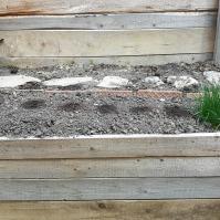 Pat dedicat în perspectivă florilor. Deocamdată am plantat niște crini, begonii și dalii. Mai vedem ce urmează.